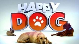 Happy Dog, Replay du 01 Août 2015
