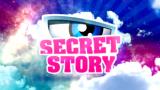 Secret Story 9 : Emilie, gagnante de SS9