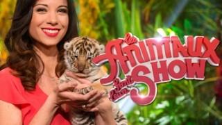 Les animaux font leur show 2015, Replay