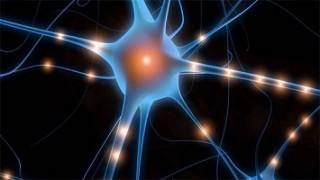 Les super-pouvoirs de notre cerveau, Vidéo du 16 Février 2016