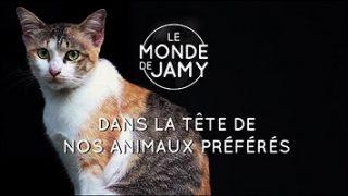 Dans la tête de nos animaux préférés, Le Monde de Jamy