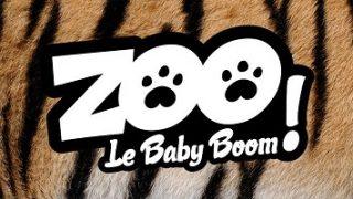 Zoo : le babyboom, Vidéo du 19 Août 2016